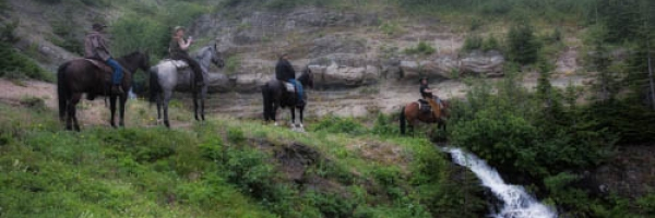 Guided Trail Horseback Riding in the Alberta Rockies
